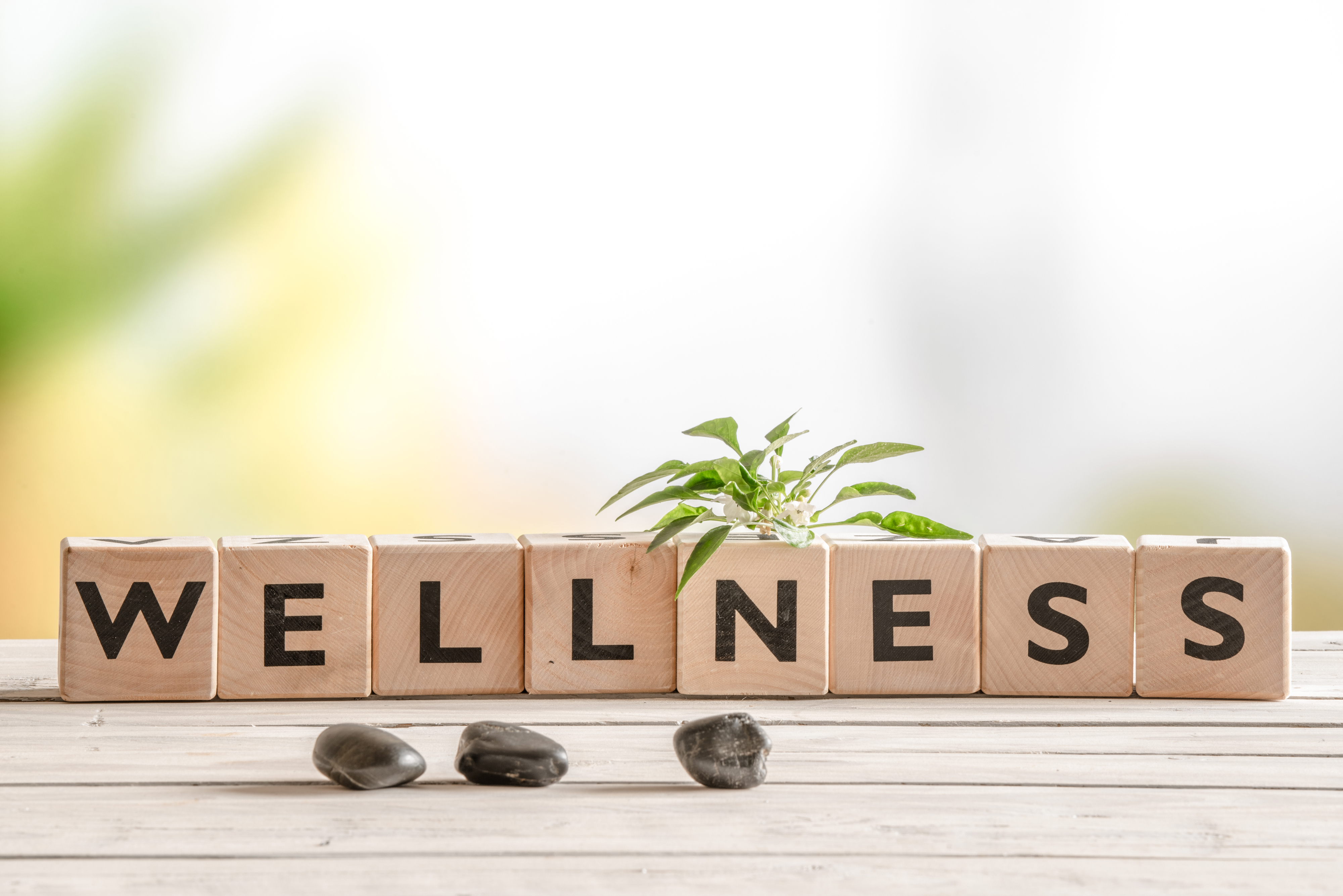 Wellness Programs: A New Competitive Edge